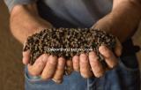 engrais organique en granulés